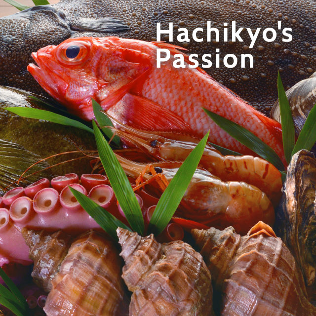 HACHIKYO'S PASSION