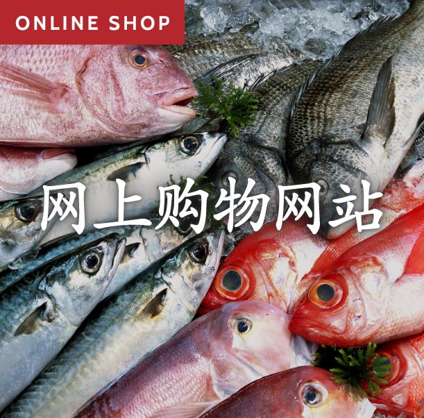 网上购物网站